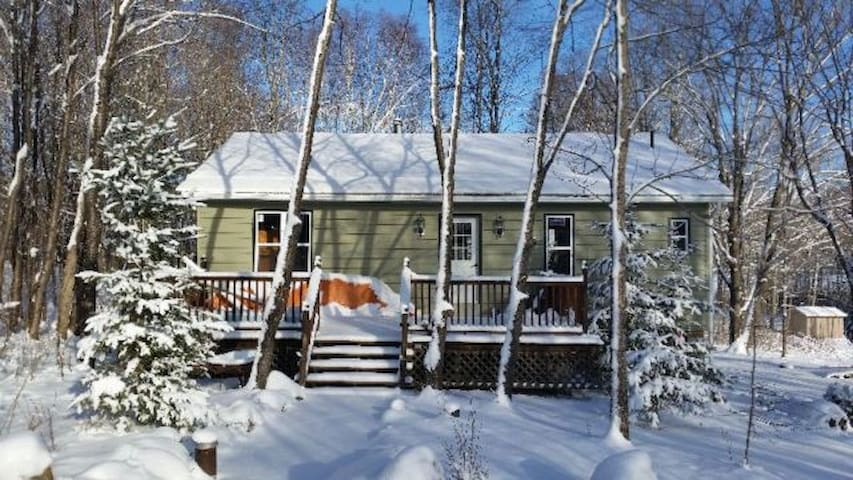 Beautiful Cottage with Sandy Beach Waterfront - Eagle Lake - Mökki