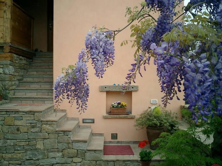 B&B Il Glicine Caresana n. 33 Trieste
