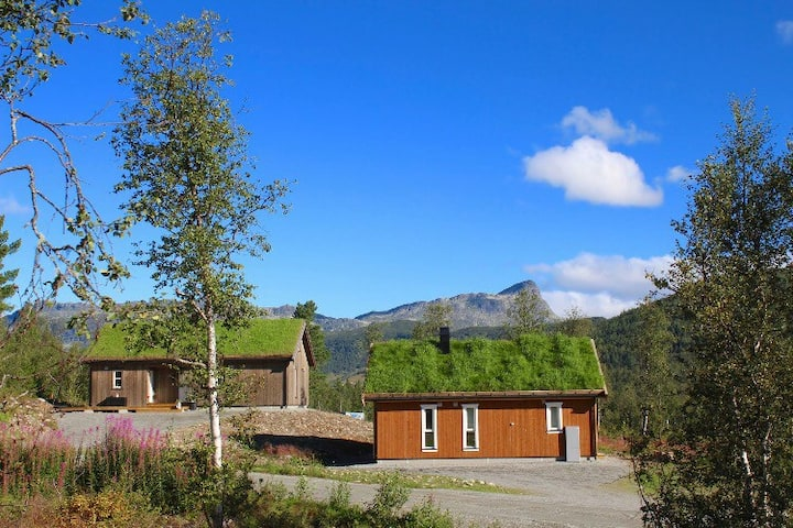 New cabin in Raudalen