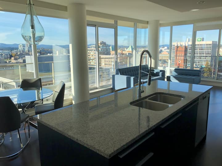 Downtown Luxury Condo Spectacular Views