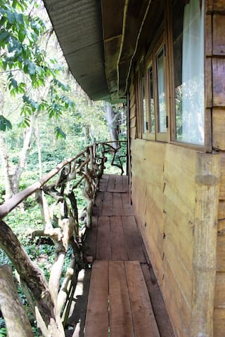 Charming tree house with estate and forest views - Masinagudi - Treehouse