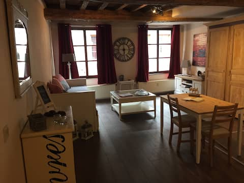 CHARMING STUDIO (HISTORICAL CENTRE OF NAMUR)