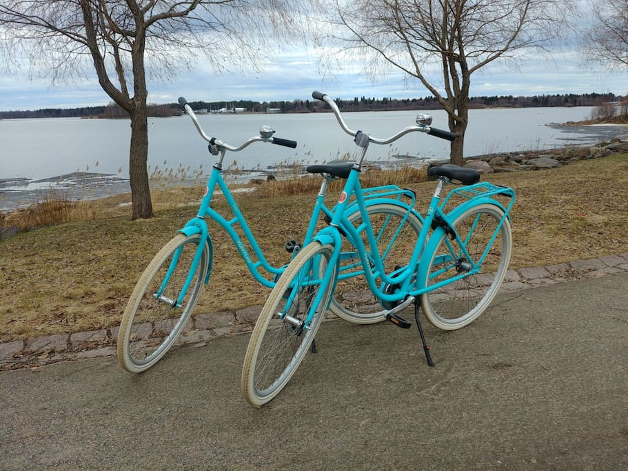 You can rent a bicycle from us. Ask for more!