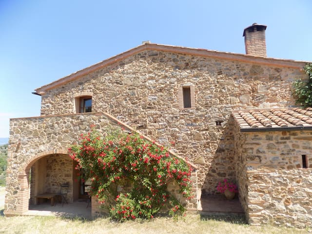 Double room in organic farmhouse near Suvereto
