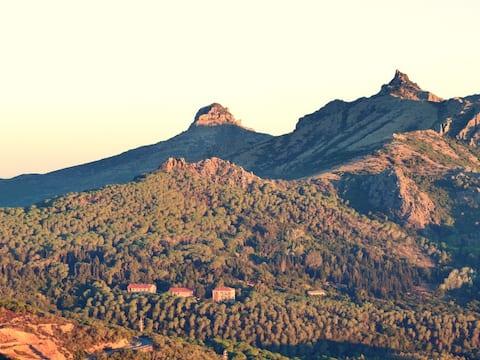 Montagna, boschi e miniere a due passi dal mare.