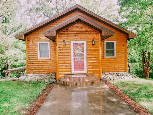 Beautiful, Quiet Log Cabin Home on Betsie River