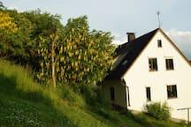 Ferienhaus zum Apfelbäumchen