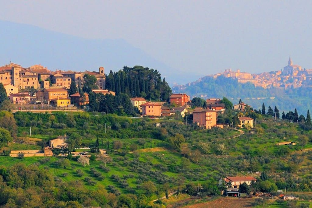 View from estate on Monte Castello Vibio