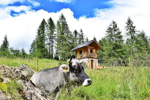 Baita del Toma - Chalet in Dolomites