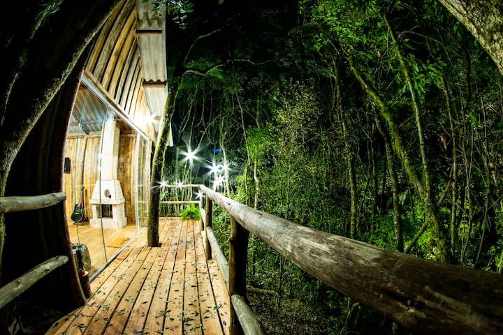 Casa na Árvore - Experiência da vida no campo!