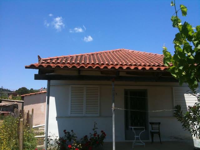 Πύργος - Agios Georgios - House
