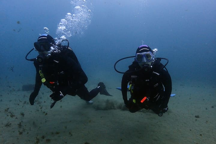 Diving with Nic