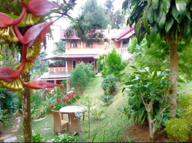 Villa Loubella (Rida)