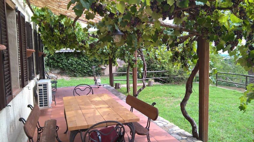 Casa Terra, Capalbio - Capalbio - House