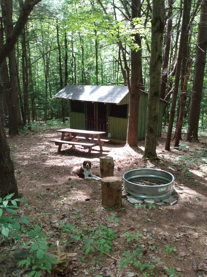 Coyote's Den Rustic Cabin