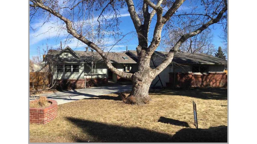 Spacious Basement Close to Everything Denver - Lakewood - Dom
