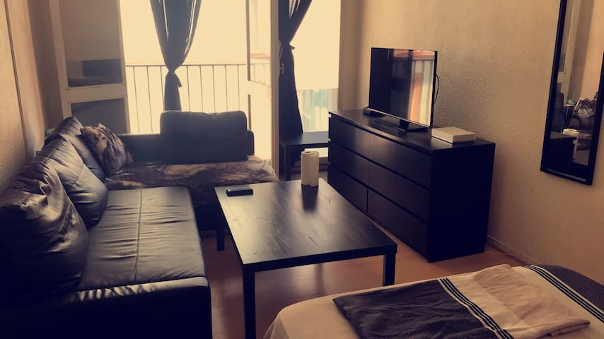 Appartement t1 bis en plein centre de Toulouse