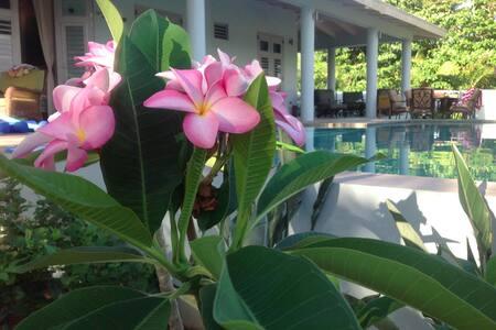 Vieques Garden House