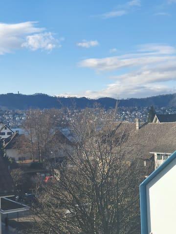 Küsnacht Luxury Apt - Zurich Goldcoast Lake Views!