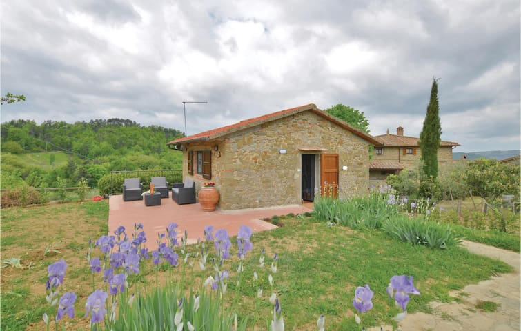 Holiday cottage with 2 bedrooms on 55 m² in Greve in Chianti -FI-