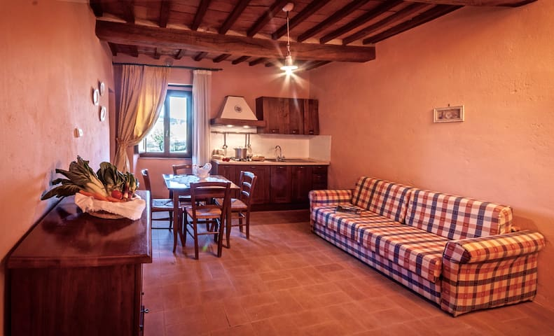 CAMPO AL VENTO Appartamento Bi-locale in Fattoria - Monte Castello di Vibio - Apartemen