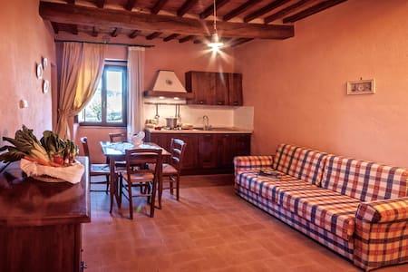 CAMPO AL VENTO Appartamento Bi-locale in Fattoria - Monte Castello di Vibio - 公寓
