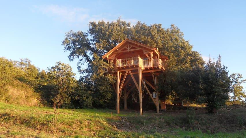 Cabane spa perchée à 6 m de haut