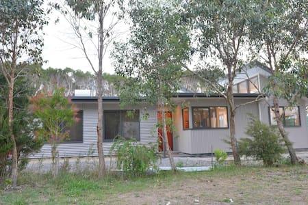 Acacia 145 - Walkerville