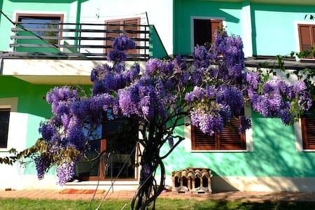 Villa/Appartamento Acero Campestre - Scoppito - วิลล่า