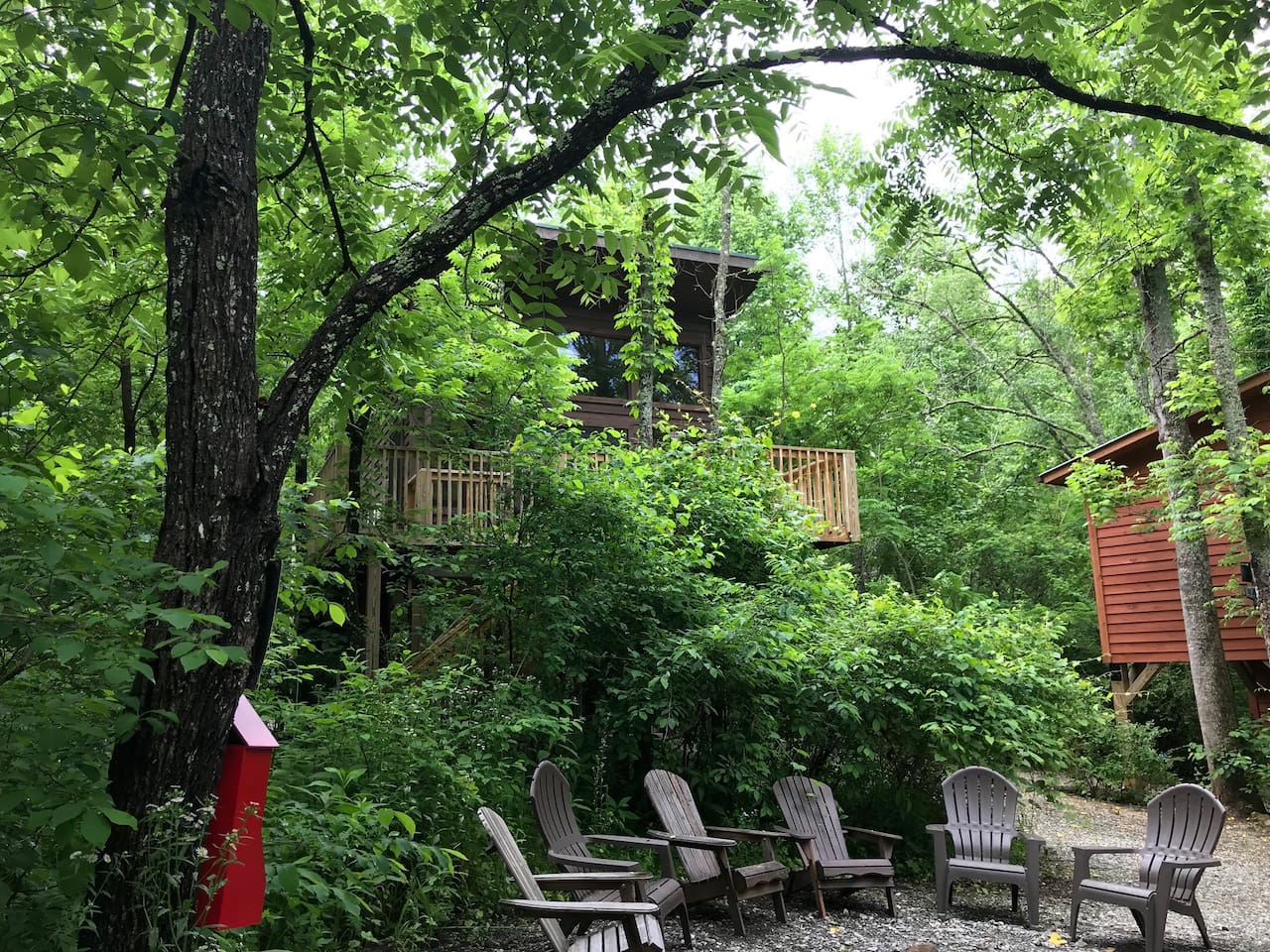 Persimmon, Treehouse #6