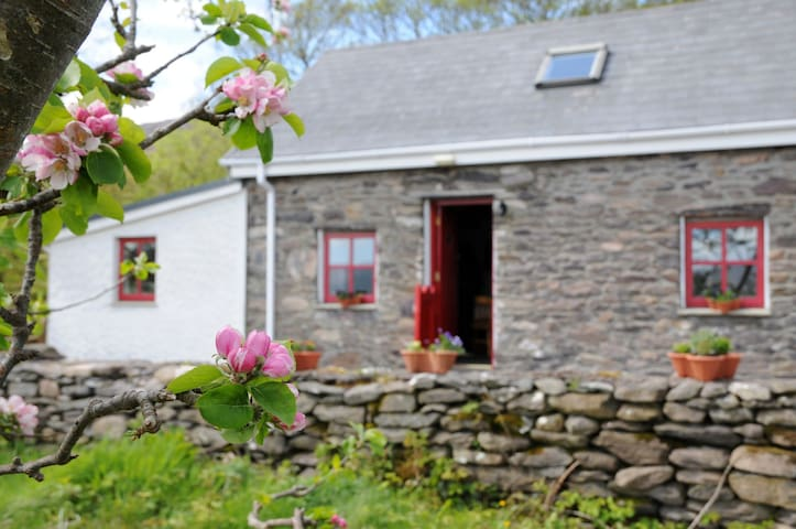 |The Ring of Kerry| 150 year old Cottage
