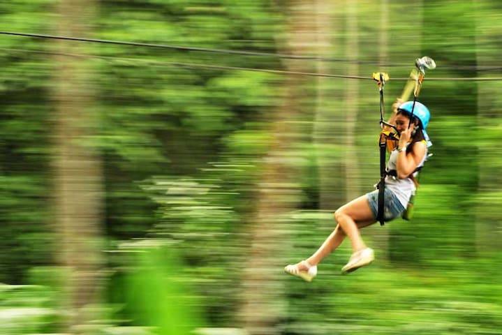 Jungle zip-line