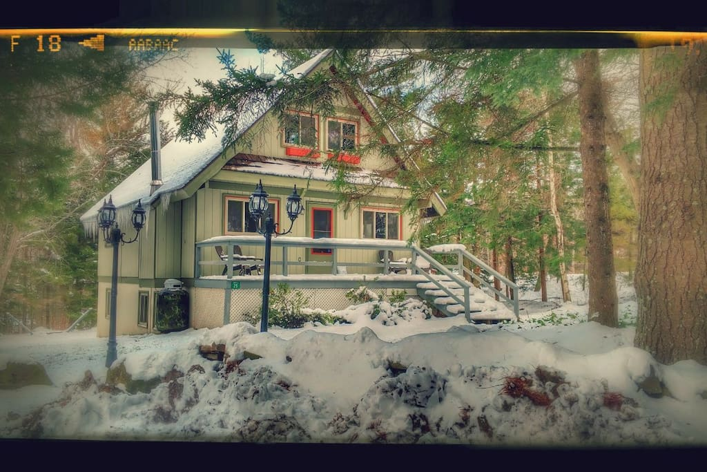 Enjoy your own Mountain Cabin on a private 3/4 acre but just steps from the Hunter Mountain lodge