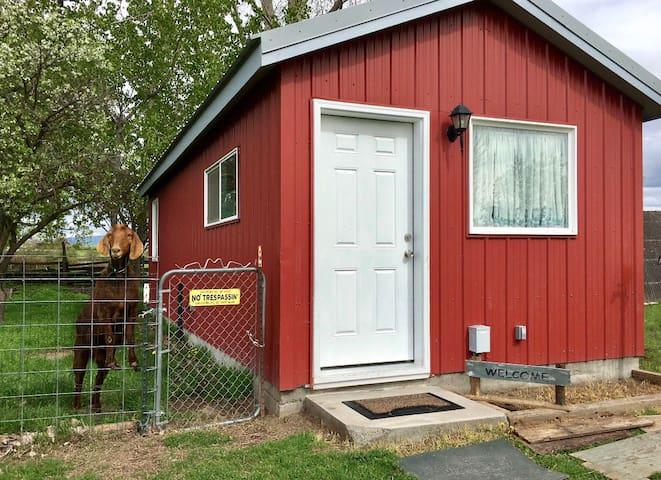 Flying S Bunkhouse Quiet Farm Setting Pet Friendly