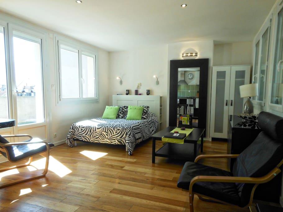 Appartement Grenoble Ile Verte