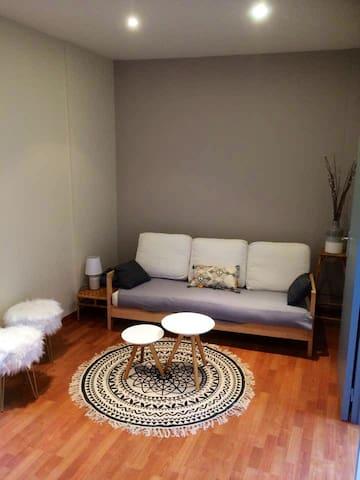 Appartement individuel plein centre d'Amboise