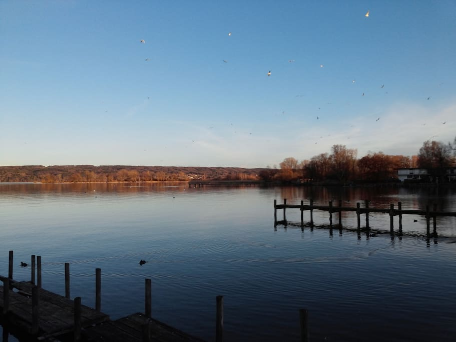 Der Ammersee/ nearby lake