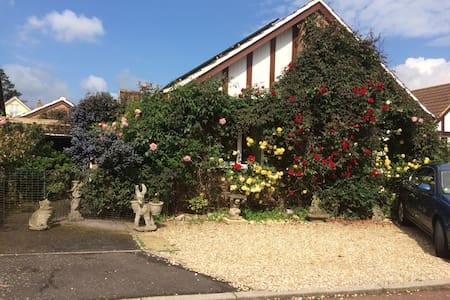 Double room in Fox Haven - Seaton