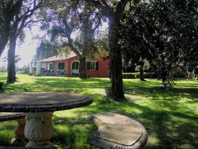Country House dans la campagne Corse