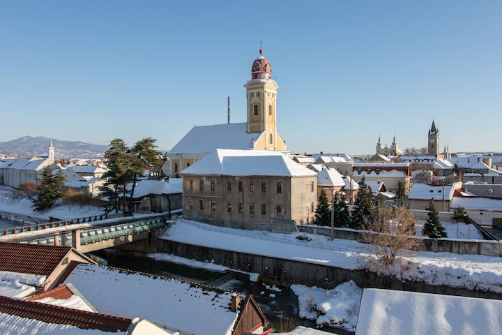 Tower View - Baia Mare - Pis