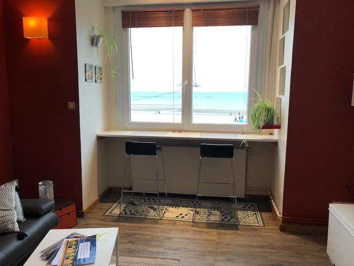 Agréable meublé face mer à Malo les Bains