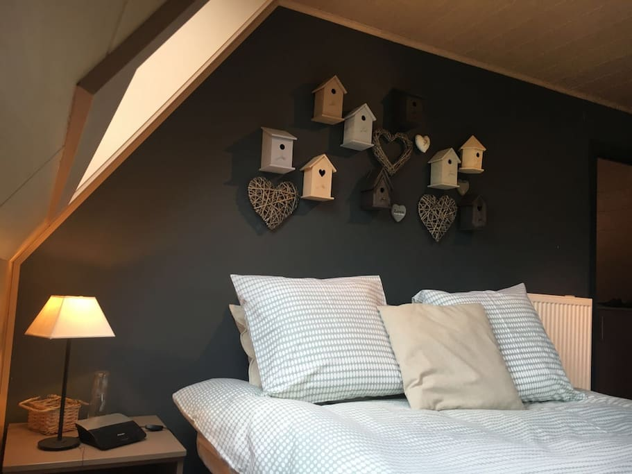 Rooms To Share Rent In Ath
