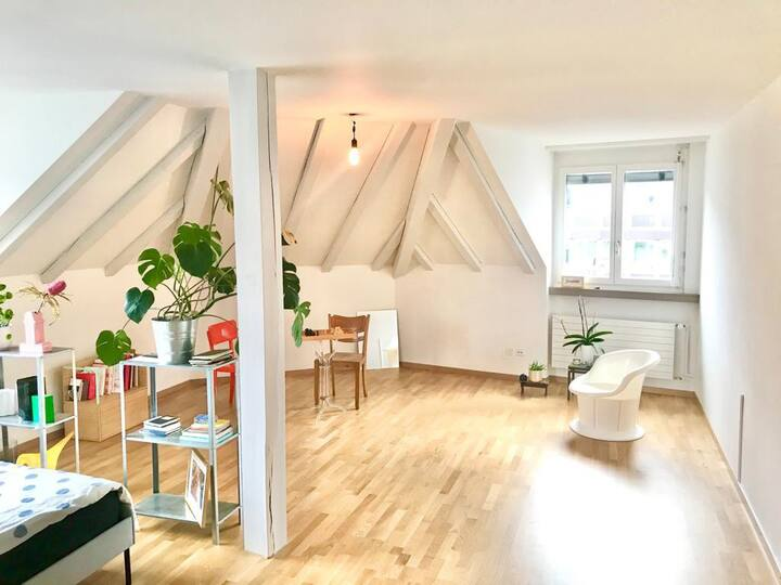 Minimalist design apartment - heart of Zurich