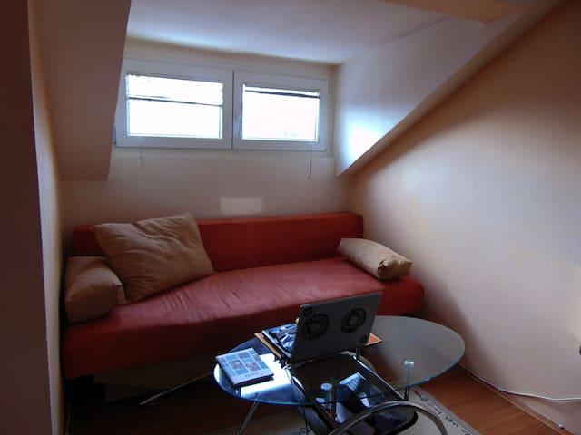 Creative studio/Galery home