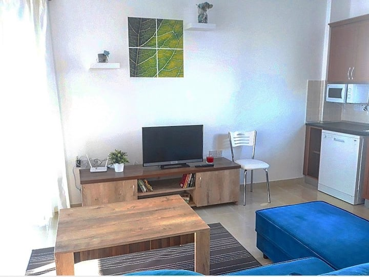 Two bedroom apartments on the sandy beach!