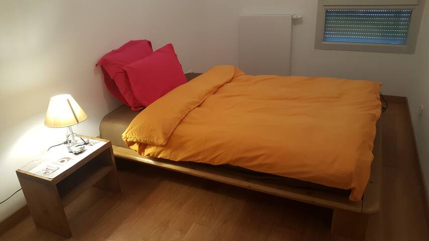 Charming room in a secure flat 2 min from Geneva