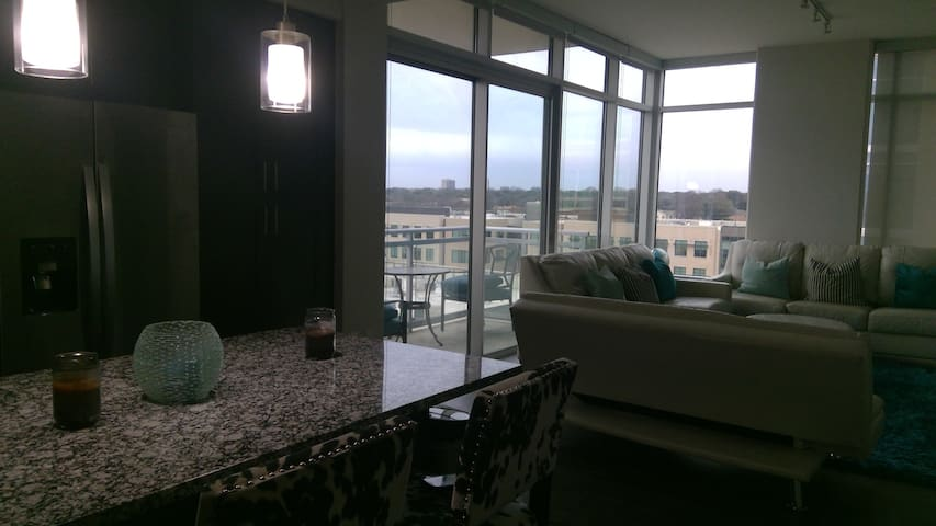 High Rise Condo with Skyline View