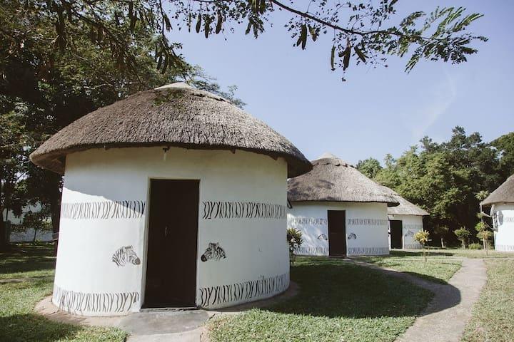 Komthandayo Zebra 3