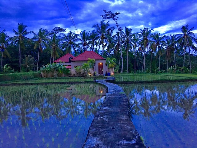 Private Gated Home Rice Field Views - Junjungan- Ubud - Haus