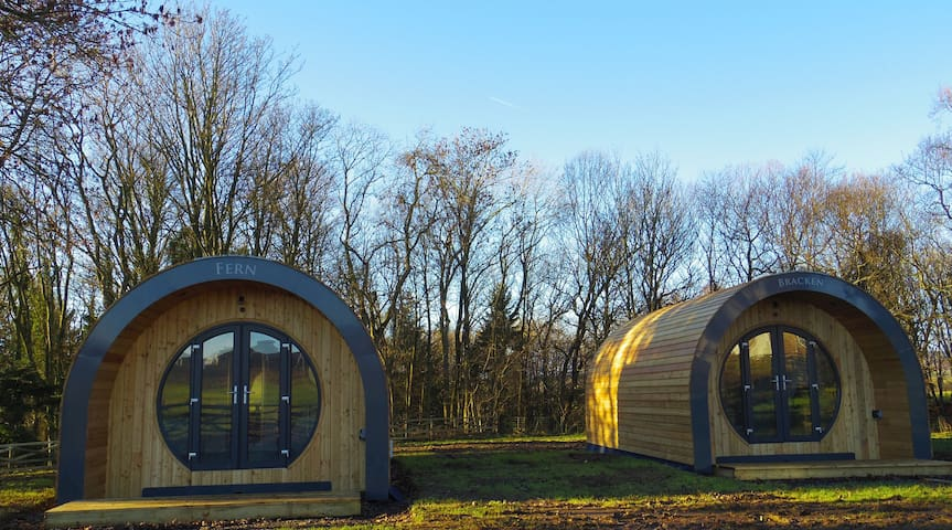 Fern - a luxurious and unique glamping pod